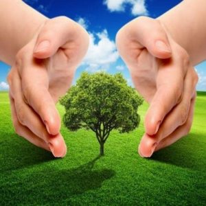 Экология и безопасность