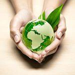 11-В/16 Современные методики преподавания в образовательных организациях СПО в условиях реализации ФГОС. Экология